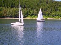 Bild 11: Urlaub im Sauerland mit Kind und Hund - Diemelsee - Wandern - Erholung PUR!