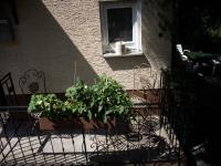 Bild 8: Kleine Hundehütte im schönen Odenwald: ab 24 € /Pers. Hunde kostenlos!!!