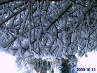 Borkum im Winter - auch eine Reise wert! - Bild 20: Ferienwohnung Eggesin auf der Insel Borkum ab 23.10.2016 frei