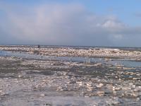Auch im Jahr 2011 wieder eine schöne winterliche Strandlandschaft! - Bild 23: Ferienwohnung Eggesin auf der Insel Borkum ab 23.10.2016 frei