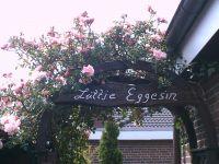 Rosenbogen - Durchgang Terrasse Gäste - Bild 5: Ferienwohnung Eggesin auf der Insel Borkum ab 23.10.2016 frei