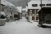 Schnee - Bild 17: Ferienwohnung Waldschrat im Pfälzer Wald