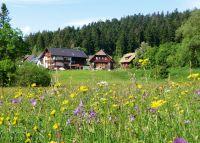 Bild 2: 4-Sterne-Ferienwohnung (3 Zi) in ruhiger Lage, 3 km außerhalb Freudenstadt
