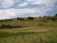 Das ist die Landschaft unmittelbar um das Feriendorf Ahrdorf. Hier können die Hunde einmal so richtig auslaufen. - Bild 20: Eifel-Ferienhaus Fliegenpilz - für Ihren Urlaub mit und ohne Hund