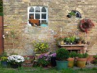 herbstliche Blütenpracht - Bild 11: Böhrs Hoff Fehmarn Ferienwohnung im Landhausstil ideal für Hundebesitzer