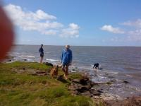 einziger Naturbadestrand an der ostfr. Küste 5 Km entfernt - Bild 23: Schicke Fewo an der Nordseeküste-Ostfriesland