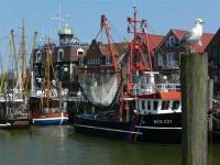 Bild 8: Schicke Fewo an der Nordseeküste-Ostfriesland