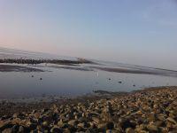 Bild 11: Schicke Fewo an der Nordseeküste-Ostfriesland