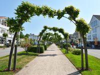 Bild 8: Ferienwohnung Rügenzauber nur 50 Meter bis zum Strand