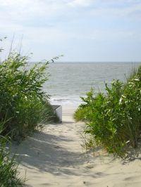 Bild 32: Zeeland Strandhaus - Ihr Ferienhaus direkt an Meer & Strand!