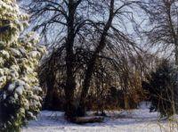 Bild 8: Ferienwohnung Rittergut - Parkblick