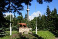 Bild 14: Kleine Ferienwohnung Ebert&Green im Erzgebirge