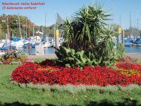 15 Gehminuten entfernt - Bild 5: 40qm Ferienwohnung, Fam. Bill, Radolfzell am Bodensee, bis 3 Personen
