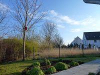 Bild 5: Kinder- u. hundefeundliches Ferienhaus in Binz, hell u. modern, mit Garten