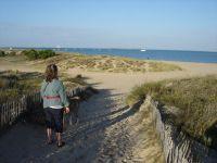 Am wunderschönen Strand der Ile d'Oléron (rd. 35 km) - Bild 8: Ferienwohnung mit Schwimmbad in SW-Frankreich, Nähe Atlantik