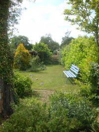 Der schöne Garten - Bild 14: Ferienhaus Ostsee (Wohlenberger Wiek) nähe Boltenhagen