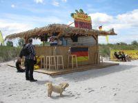 Zur WM 2014 in Brasilien/Schönberg wurde ein tolles Programm direkt am Strand geboten - Bild 11: Ostseeurlaub im Ferienappartement Carpe Diem