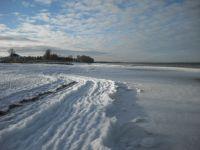 Bild 5: Urlaub mit Hund an der Ostsee