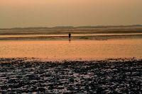 auch bei untergehender Sonne zu empfehlen - Bild 26: Huus-Thimo an der Nordseeküste - Hunde willkommen - rauchen erlaubt - WLAN