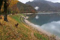 Bild 14: hundefreundliche Fewo Seeblick mit eigenem eingez. Garten+Pool am Ledrosee