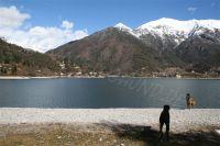 Bild 11: Villa Rosemarie mit traumhaften Blick über Ledrosee für Urlaub mit dem Hund