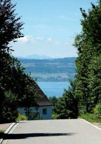 In nur 20 Minuten sind sie an den See gelaufen - Bild 2: Landhaus Pension Elisabeth in Meersburg - umgeben von Wein und Obstbäumen