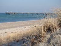 Strand mit Seebrücke in Rerik - Bild 17: Ferienhof im Ostseebad Rerik, komf. Fewoén u. -häuser tlw. mit Kamin