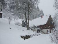 Bild 2: Ferienhaus Warratz in idyllischer Alleinlage zum Alleinbewohnen Schwarzwald