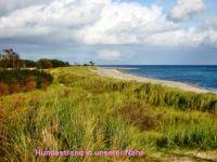 """Bild 29: Ferienhaus """"Ostseetraum""""Urlaub mit Hund an der Ostsee 1,60m hoch eingezäunt"""