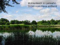 """Bild 26: Ferienhaus """"Ostseetraum""""Urlaub mit Hund an der Ostsee 1,60m hoch eingezäunt"""