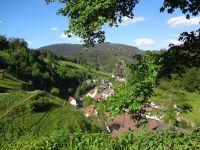 Unvergesslich - der Blick ins Tal - - Bild 14: Exclusive Studio- Ferienwohnung im Schwarzwald - Hund incl.