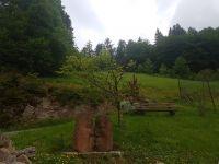 einer der Skulpturen rund ums Haus - Bild 2: Exclusive Studio- Ferienwohnung im Schwarzwald - Hund incl.