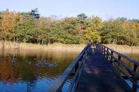 Die Holzbrücke über den Strom auf dem Weg zum Strand - Bild 17: Hundefreundliches Ferienhaus im schönen Ostseebad Prerow