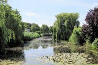Blick auf einen schönen Teich in unserem Villa Park - Bild 23: Sehr schönes Ferienhaus, jetzt € 50,- Rabatt jedes Wochenende bis Mai