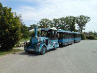 Mit der Bäderbahn kostenlos zum Strand - Bild 17: Rügen strandnahe Ferienwohnung in Sellin 300 m zum Strand bis 4 Pers