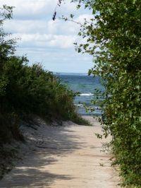 nach etwa 400 m durch die Feldmark und einem kleinen Waldstreifen erreichen Sie den Strand - Bild 5: Steuerbord-Haus strandnaher Hundeurlaub im ruhig gelegenen Ferienhaus