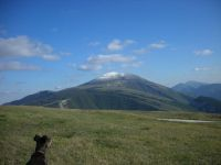 Bild 11: Casa Lucia: Ferienwhg Mittelitalien / meernah / familien- + hundefreundlich