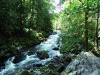 Bild 23: Ferienidylle Eder 5 Sterne DTV / Bayerischer Wald
