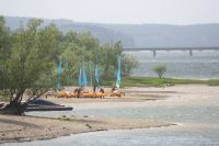 Bild 11: Ferienwohnung mit Terrasse am Möhnesee, Garten, Liegewiese und Grillkamin