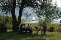 Bild 17: Ferienwohnung mit Terrasse am Möhnesee, Garten, Liegewiese und Grillkamin