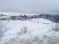 Bild 20: 70m² Ferienhaus mit Panoramablick gegenüber Skihang, Mountaintrailparkour