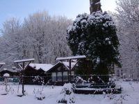 Bild 14: Luxus Blockhütte mitten im Wald Hunsrück