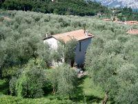 Bild 2: Ferienhaus LAURA in Malcesine in einem 2500 m² großen Olivenhain