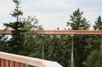 Eine Attraktion ist der Baumwipfelweg bei St. Englmar. Er ermöglicht einen Spaziergang in luftiger Höhe mit hervorragender Aussicht. Auch Hunde dürfen hier mitgenommen werden ! - Bild 17: Blockhausurlaub Bayerischer Wald - ideal für Familien mit Kindern und Hund