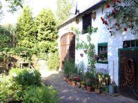 Bild 14: Zur Hexenlinde - Ferienhaus im Herzen der Vulkaneifel