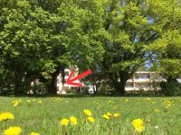 Bild 5: Seeblick Appartement, Strandbadstraße 86, 78315 Radolfzell am Bodensee