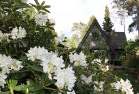 Bild 26: Ferienhaus Onyx, Meißendorf, Hüttensee, Naturschutzgebiet, Lüneburger Heide