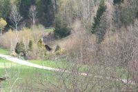 Bild 2: Ferienhaus Christine im Schwarzwald