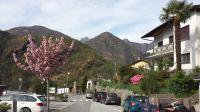Zufahrtstraße Orasso 500m von Hauptstraße des Tals - Bild 2: Sonnig und ruhig gelegenes Ferienhaus in Orasso (Cannobiner Tal)