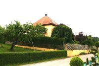 Bild 23: Ferienhaus Gabriela mit eingezäunten Garten und privatem Swimmingpool